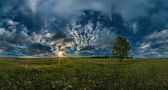 Россия. Земляничные поляны - Russia. Strawberry fields. (Anton_Letov) Tags: fisheye flowers green grass sky sunset sun clouds tree russia nikon strawberry fields