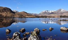 The Black Mount (andrewmckie) Tags: lochannahachlaise rannochmoor blackmount theblackmount scotland scottish scottishscenery scenery outdoor reflections water theworldisbeautiful