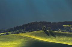 twins (kasinco) Tags: slovakia shadow landscape light trees pentax spring