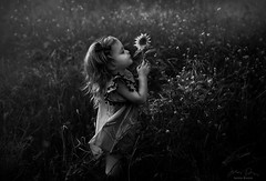 Single Bloom ({jessica drossin}) Tags: jessicadrossin child girl flower blackandwhite wwwjessicadrossincom wind childhood kid