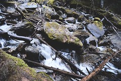 Iced Out - 002. (i threw a guitar at him.) Tags: dewey creek skagway alaska 2019 march spring iced out water fall waterfall klondike national park upper lake trail hike hiking nature wild moss rocks rocky