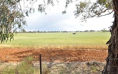 Lot 196 Broad Street, Old Junee NSW