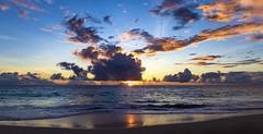 Anse Intendance / Пляж Анс Интенданс (dmilokt) Tags: природа nature пейзаж landscape море sea пляж beach песок sand пальма palm небо sky облако cloud dmilokt nikon d850
