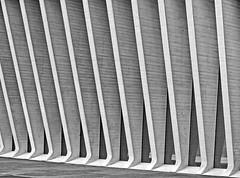 contemporary concrete (christikren) Tags: abstract architecture building concrete auditorio bw christikren facade geometry grey lines monochrome modern santacruzdetenerife teneriffa canaryislands architectsantiagocalatrava modernbuilding structure geometrie