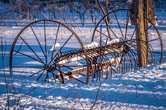 Snowbound (Wes Iversen) Tags: glenview illinois tamron150600mm thegrove antique rake rust rusty shadows snow trees vintage wheels winter