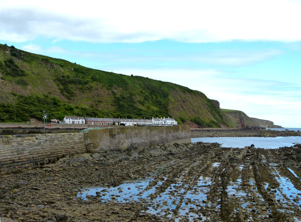 The World's Best Photos of burnmouth and harbour - Flickr