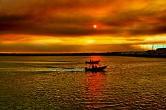 Mar dourado (Zéza Lemos) Tags: natureza natur núvens nuvens natural entardecer portugal praia pordesol puestadelsol mar anoitecer algarve água areia reflexos vilamoura