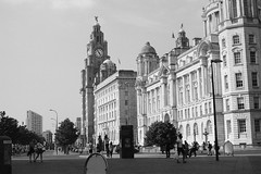 Royal Liver Building (Jim Davies) Tags: liverpool film analogue analog veebotique 35mm konica vx400 expired blackandwhitefilm monochrome chromogenic c41 bw streetphotography street l1 royalliverbuilding june 2018 summer summertime