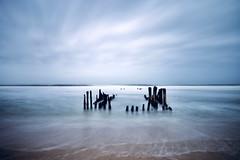 Buhnen (kuestenkind) Tags: sylt buhnen strand nordsee northsea beach northgermany schleswigholstein langzeitbelichtung longexposure