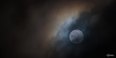 Måne bag skyer 2019-02-19 (Gorixdk) Tags: danmark denmark dk canon eos 6d mark ii 2 ef 100400mm f4556l is dslr moon supermåne clouds lune