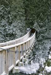 Snow Covered Hanging Bridge in February II (Bill Smith1) Tags: agfavista200 believeinfilm billsmithsphotography caledon2019 heyfsc nikkorai50f14lens nikonfm