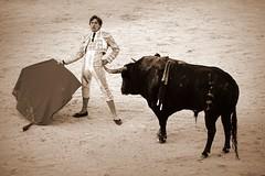 Preparando una bilbaina (aficion2012) Tags: juan leal francia france corrida bullfight bull toro torero toreador toreo tauromachie tauromaquia taureau tauromachy baltasar iban matador muleta monochrome sepia bilbaina