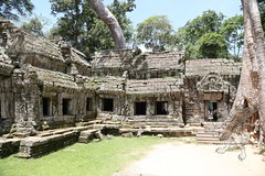 Angkor_Ta Prohm_2014_13