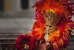 Carnevale a Venezia, marzo 2019 (Zaffiro&Acciaio: Marco Ferrari) Tags: italia italy veneto venezia venice carnevale carnival sfilata parade canon canon500d 150600 150600sigma sigma inverno winter marzo march 2019 costumi costumes maschere mask