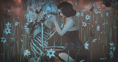 Beautiful and Broken (Stefania Giano) Tags: mimikri zodiac doux glamaffair lepoppycock anc