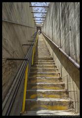 _MG_7169c (Steven Encarnación) Tags: steven encarnacion photographer canon 6d voigtlander 20mm f35 hawaii oahu availablelight stairs steps people color