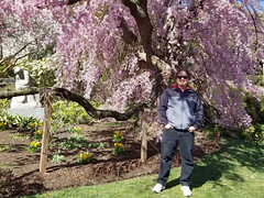 2019-03-31 14.51.43 (littlereview) Tags: dc littlereview 2019 nationalcathedral church flower family garden spring blog