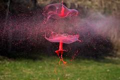Ballon explosif . (mousse.annick) Tags: explosion peinture sony gouttes proxi macro bokeh
