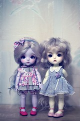 IMG_9935 (Marinevirgo) Tags: bjd lati yellow line latidoll lami haru elly kimmy miel coco sbelle sissi tiny tan normal violet white doll