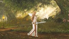 Valkyrie (Angel Neske) Tags: angel valkyrie warrior sword landscape magic fantasy mythology sl