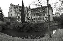 Château d'Osthouse (Philippe Haumesser (+ 8000 000 view)) Tags: château castle rivière river arbre arbres tree trees ciel sky châteaudosthouse osthouse basrhin 67 alsace elsass france nikond7000 nikon d7000 reflex 2019 noiretblanc blackandwhite monochrome