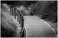 Der Weg (Art de Lux) Tags: langeoog deutschland germany nordsee northernsea nationalpark wattenmeer mudflat waddensea dünen dunes sand weg path geländer railing himmel sky wolken clouds landschaft landscape ruhe silence einsam lonely schwarzweis sw blackandwhite bw monochrome blackwhite mono canon eos lowkey natur nature artdelux fullframe