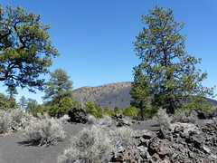 SSCNMs2018 (2) (jb10okie) Tags: sunsetcrater sunsetcraternationalmonument sunsetcratervolcano sunsetcratervolcanonationalmonument nps nationalmonuments america arizona vacation volcano travel trip trails hiking