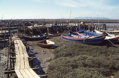 Carrasqueira - Fischerhafen auf Pfählen (fotoculus) Tags: portugal rundreisesüdmitteportugal1997 fischer fischerhafen fischerdorf carrasqueira fischerhäuser reetdach