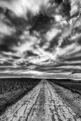 Life, wider {Explore} (ZeGaby) Tags: bw blackandwhite champagne hdr irix15mm landscape naturephotography noiretblanc paysage pentaxk1 marne france fr valdelivre