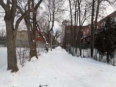 (navejo) Tags: montreal quebec canada alley snow trees fence