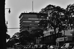 Edificio Colon (4over3) Tags: city ciudad san jose costarica em10markii em10mkii