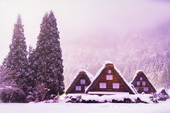 The landscape of Japan. Historic Village of Shirakawago in winter, Shirakawa is a village located in Ono District, Gifu Prefecture, Japan. Feb 2, 2019. (pomp_jaideaw) Tags: shirakawago japan winter village snow shirakawa heritage world gifu japanese historic go asia old scene house culture historical town unesco travel white season view traditional tourism cold scenic landmark famous landscape architecture asian sightseeing festival night light snowy tourist up street gassho roof twilight thatched illumination