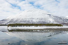 Fjord Reflection (kevin-palmer) Tags: norway arctic europe winter march snow snowy arcticocean sea water fjord mountains nikond750 reflection cloudy overcast tamron2470mmf28 scandinavianmountains cold oteren lyngen signaldalelva tromscounty mirror