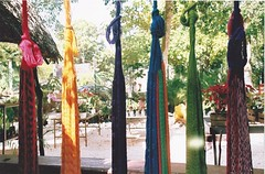 slots (omnia_mutantur) Tags: yucatán messico mexique mexico colori cores colors couleurs hamacs hammocks macas hamacas jardin giardino garden jardim piante plantas plants hangs appesi pendus