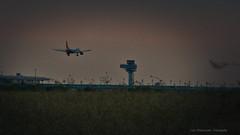 P1000153L (lutz47) Tags: ber landung abend schönefeld flughafen easyjet deutschland brandenburg berlin outdoor
