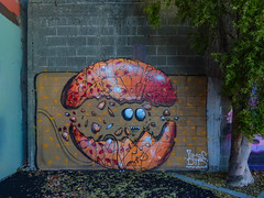 From Small Acorns (Steve Taylor (Photography)) Tags: yikes dtr jacob acorn breaking hatching splitting face eyes shell graffiti mural streetart blue mauve brown orange red violet purple newzealand nz southisland canterbury christchurch cbd city tree