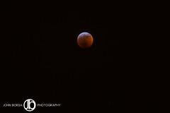 Super Blood Wolf Moon (JohnBorsaPhoto) Tags: lunar eclipse sky moon super blood wolf 2018
