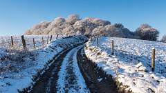 Castle Hill (Maria-H) Tags: snow winter lane glossop derbyshire highpeak uk olympus omdem1markii panasonic 1235