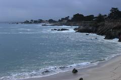IMG_9759 (mudsharkalex) Tags: california pacificgrove pacificgroveca loverspointpark loverspointbeach beach