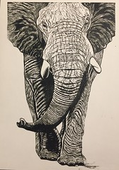 Elephant Linocut by robartprints (rcolv1) Tags: printmaking linocut outofafrica elephant