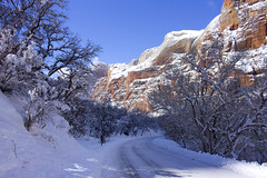 Zion National Park in the Snow (swissuki) Tags: zion national nature park sky snow landscape mountain usa ut utah