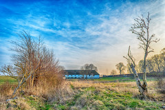 (walk in the country) Tags: lillelyngby denmark danmark hdr winter afternoon hike cold farm trees blue green baretrees countryside