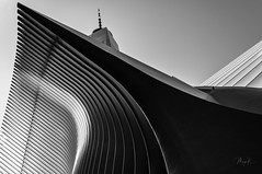 THE OCULUS (Maya K. Photography) Tags: oculus oneworldtradecenter owtc ny nyc newyork newyorkcity usa us unitedstatesofamerica america worldtradecenter architecture skyscraper angle wideangle building bw bwphoto transportation hub manhattan arch arches blackandwhite blackandwhitephoto blackandwhitephotography ground bigapple wtc station symmetry nikon nikond5000 nikkor monochrome monochromephotography lines lowermanhattan terminal mayak mayakphotography