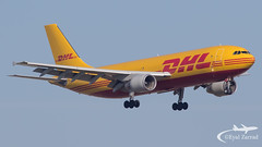 TLV - DHL Airbus A300-600 Freighter D-AEAB (Eyal Zarrad) Tags: a300600f daeab dhl llbg telaviv aircraft airport aviation airline airlines aeroplane avion eyal zarrad airplane spotting avgeek spotter airliner airliners dslr flughafen planespotting plane transportation transport photography aeropuerto tel aviv tlv israel 2019 ben gurion canon 7d mk2 jet jetliner