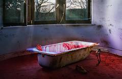 Gruselschocker (6 Sichtweisen) Tags: badewanne innendetails locations villen urban urbex lostplace abandoned verlassen schaurig hand gruselig blut bathtub blood room villa