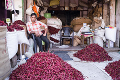 Chilli King (phil.w) Tags: pentax k1 limited lens india bundi rajasthan shop chili chilli chillies pepper red vendor piles colour food man sitting proud fa31 31mm portrait people smcpfa31mmf18 candid street
