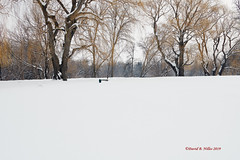 DSE_6504 (pezlud) Tags: 20190223 snow winter winterscenes trollwoodpark fargo nd usa landscape white mantleofwhite seaofwhite dashesofcolor color