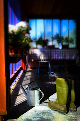 Rubber boots (koirankynsi) Tags: flowers boots rubber terrace summer shadows sunshine gardening wateringcan wateringpot