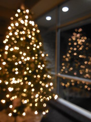 DSCN2779 (tombrewster6154) Tags: christmas tree middecember last week autumn 2018 westover church window reflection lights pretty beautiful stunning digital camera photograph lovely picture holiday season advent