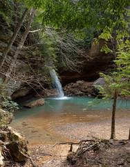 Hocking Hills-15 (saylorty) Tags: hockinghills hocking hills state park columbus ohio logan ash cave ashcave cedarfalls cedar falls waterfall hiking nature beautiful